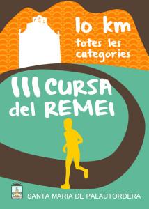 CURSA-REMEI-2013